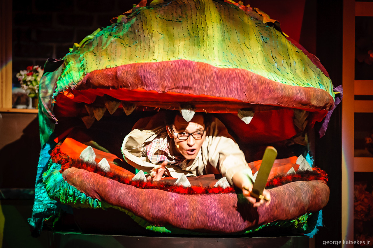 LITTLE-SHOP-OF-HORRORS-SUNSET-PLAYHOUSE