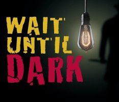 2-wait until dark thumb